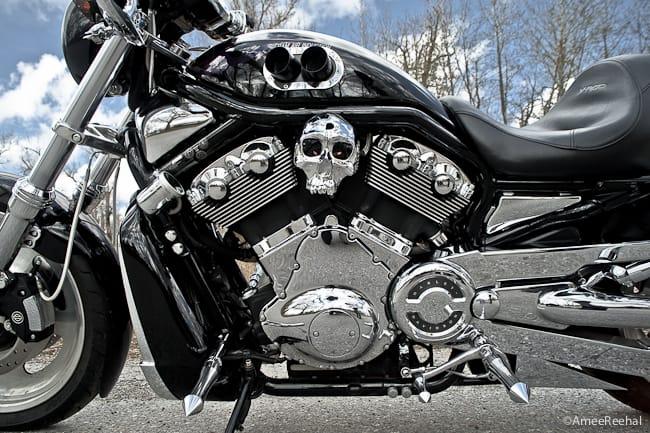 Custom V-ROD Bikes