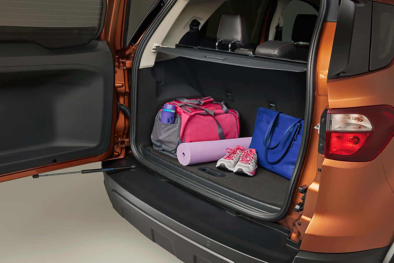 2018 Ford EcoSport rear cargo