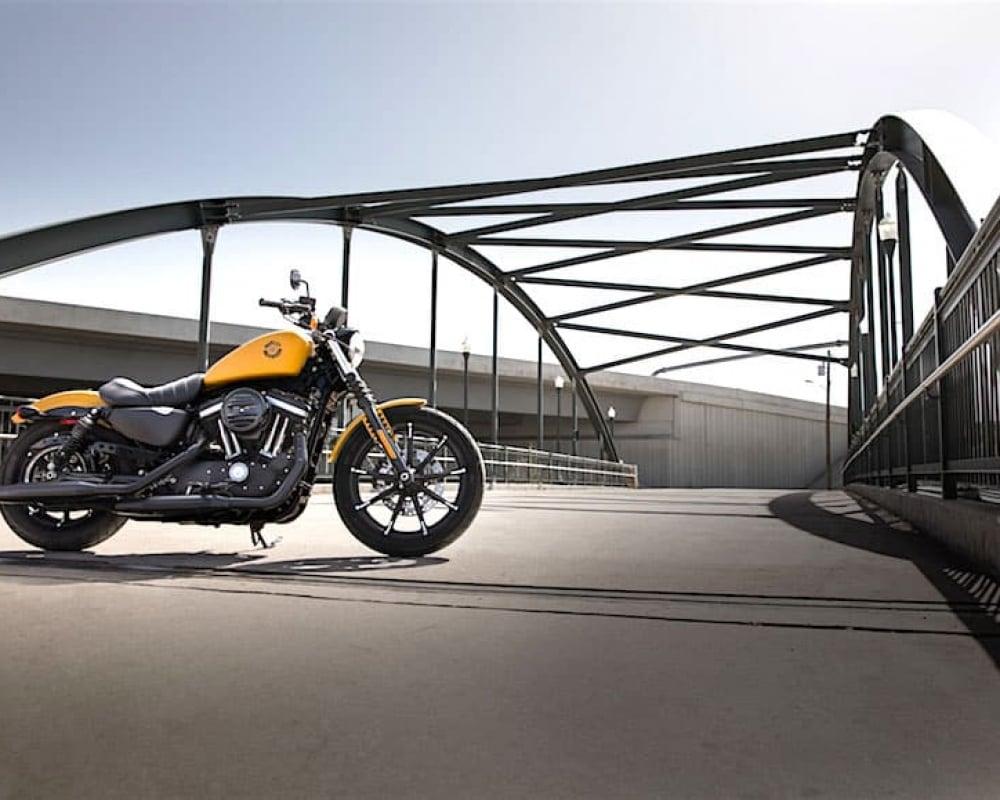 Harley-Davidson iron 883 best beginner motorcycles