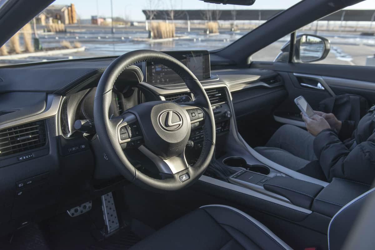2021 Lexus RX 350 Black Line (9 of 17)